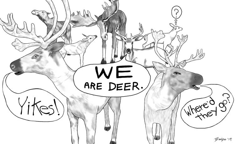 CV5-males-have-antlers